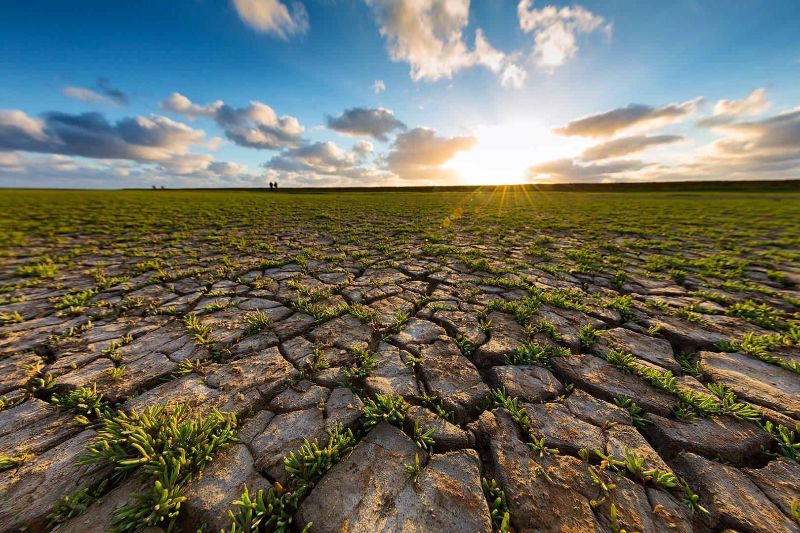 landschap-droogte-natuur-zon