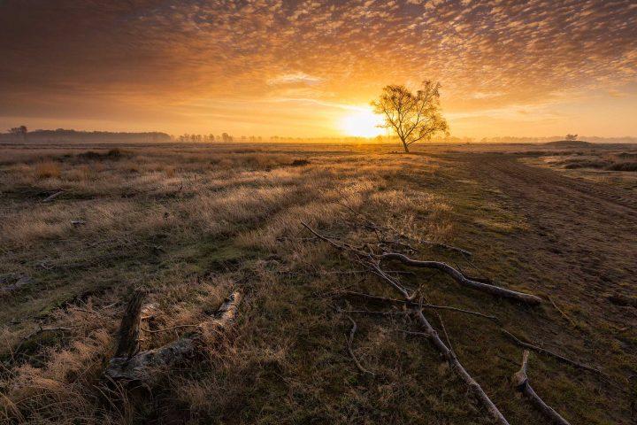 Balloërveld - Een mooie herfst ochtend op het Balloërveld in Drenthe tijdens de zonsopkomst