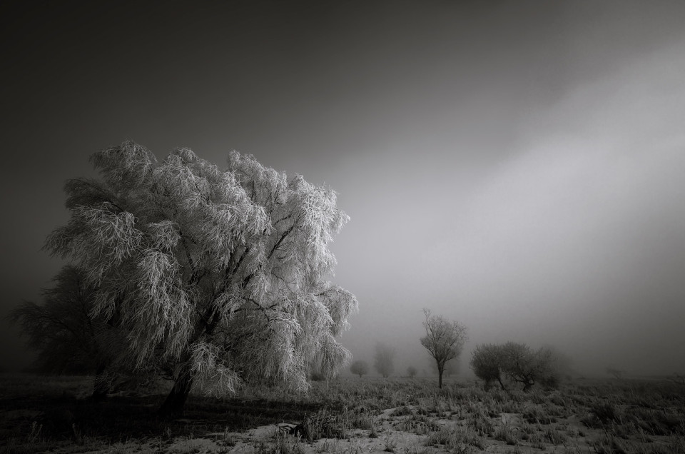Winter Darkness - Honorable Mention International Fine Art Photography Awards 2014