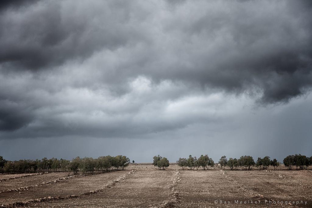 November rain - Western Morocco - Canon EOS 5Dsr + Canon EF 24-70mm f/2.8 L II at 42mm, f/2.8, 1/500 sec. at iso 200