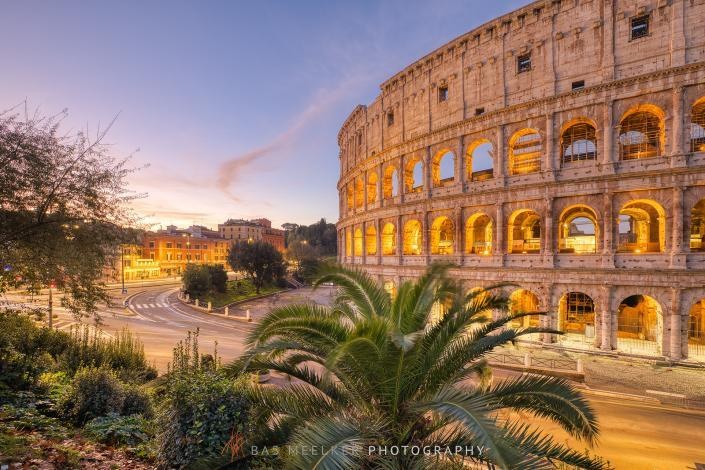 The Roman Colosseum with green palm trees in the foreground and a blue sky with pink colors in the background - Travel image, Rome, Italy