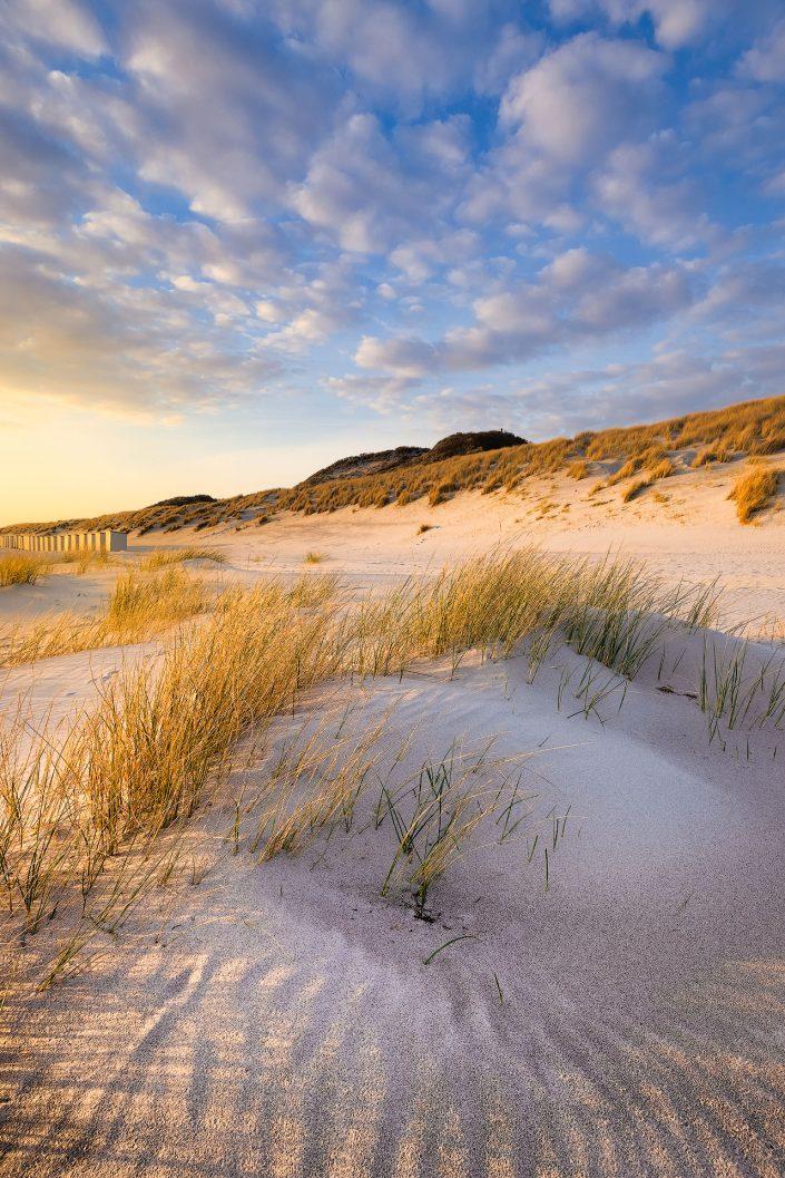 Warm avondlicht valt op het duin landschap aan de kust bij Westerschouwen op Schouwen-Duivenland in Zeeland.