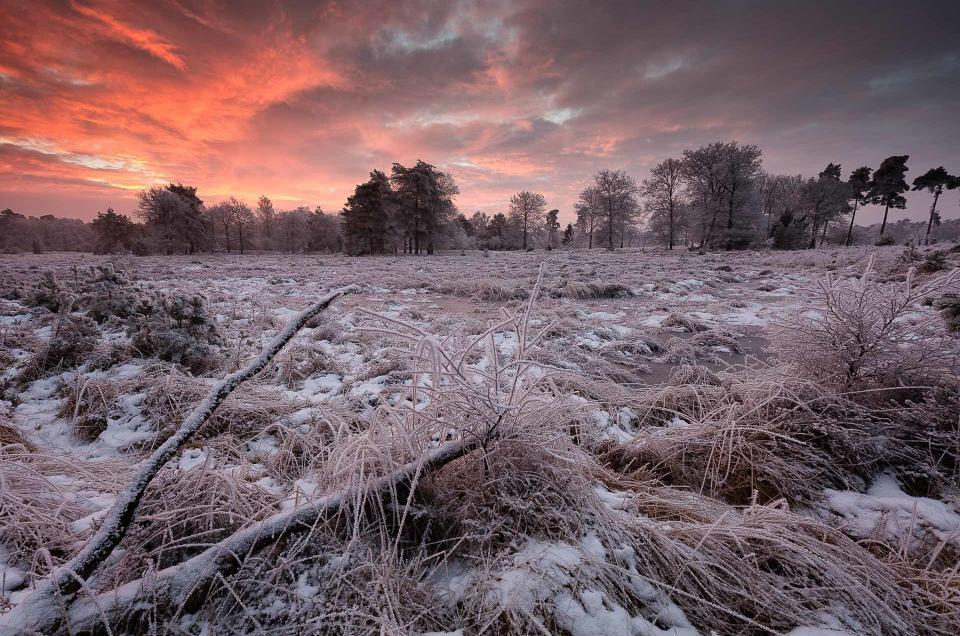 Zonsondergang over een winters landschap op het Dwingelderveld in Drenthe - Bas Meelker Landschapsfotografie