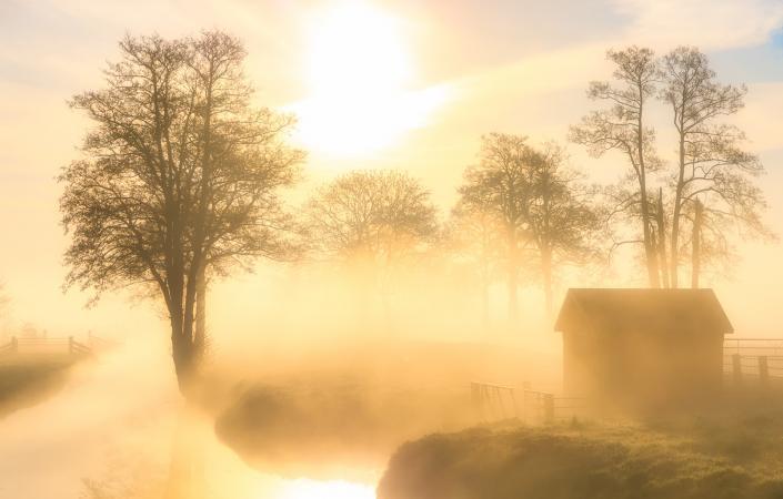 Een prachtige mist hangt over het landschap bij Landgoed Nienoord in Leek terwijl de zon langrzaam de land opwarmt en de mist optrekt.