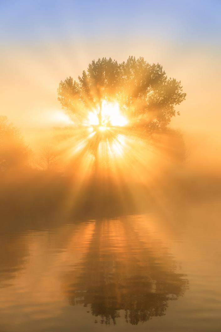 Het Groninger Landschap op een mooie ochtend in mei met prachtig licht en mist