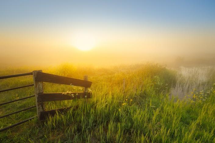 Zonsopkomst boven de Wieden op een mooie mistige lente ochtend in mei.