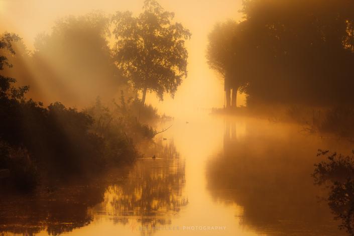 Een mistige landschap bij het Zuidlaardermeer in Drenthe. Mist en het warme licht van de ochtend zorgt voor een heerlijke lenteochtend aan het Zuidlaardermeer in Drenthe