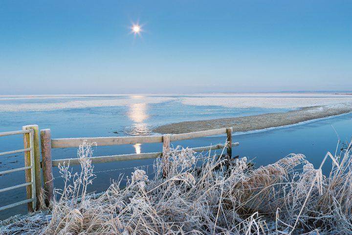Lauwersmeer Nationaal Park in de winter met een volle maan die het landschap verlicht
