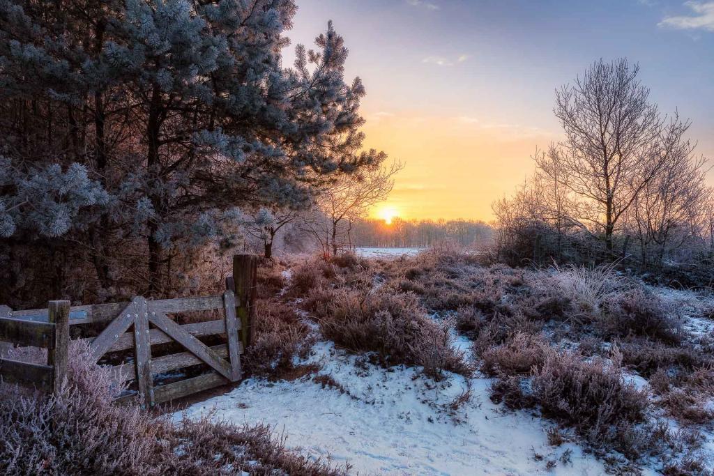 Oudemolen-landschapsfoto-Drenthe