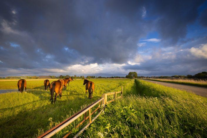 Donkere wolken trekken over het Hogeland in Groningen op een mooie voorjaarsochtend.