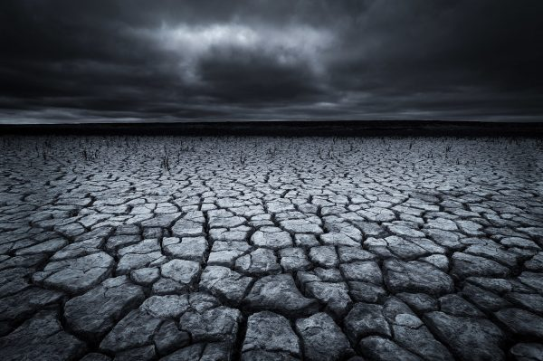 Drought in The Netherlands