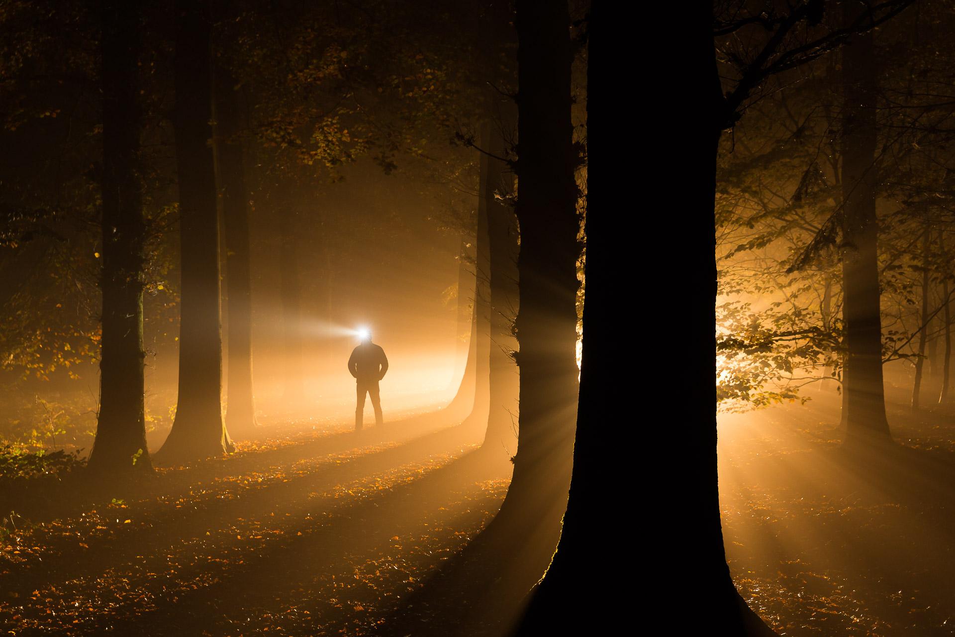 Into Darkness - Een mistige en mystieke nacht in de bossen bij Roden in Drenthe - Bas Meelker Landschapsfotografie