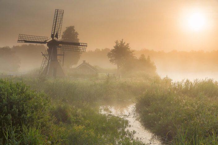 Deep Dawn Summer - De Weerribbem National Park