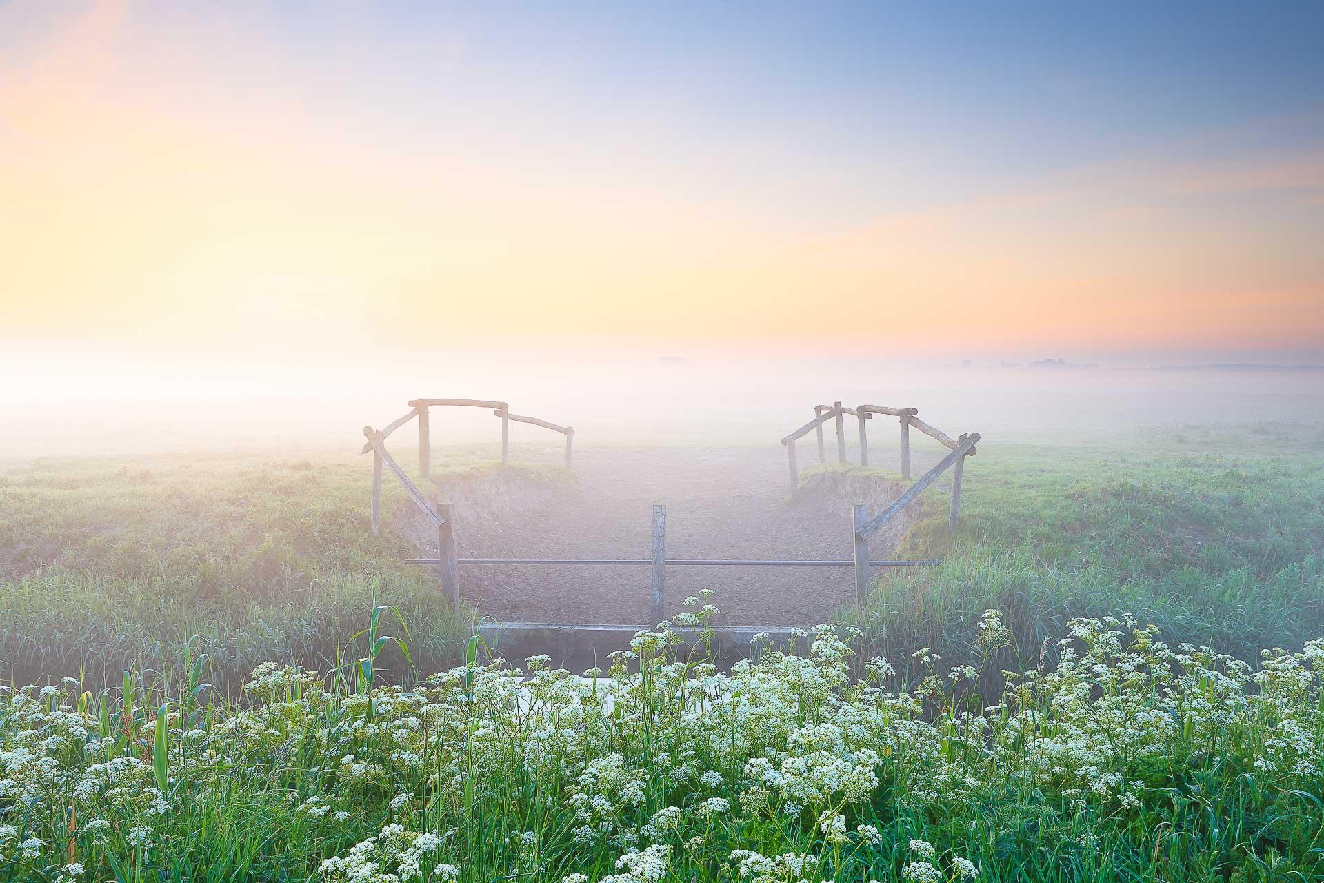 Een mistige ochtend in mei met grondmist boven de weilanden