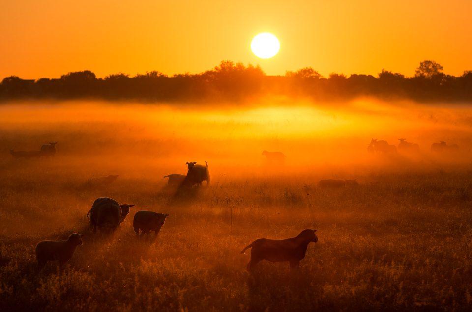 Mooie landschapsfoto's maak je op mooie momenten