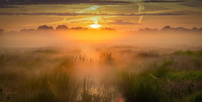 Zonsopkomst boven het Nationaal park De Weerribben-Wieden op een mooie mistige lente ochtend met warm licht over de velden.