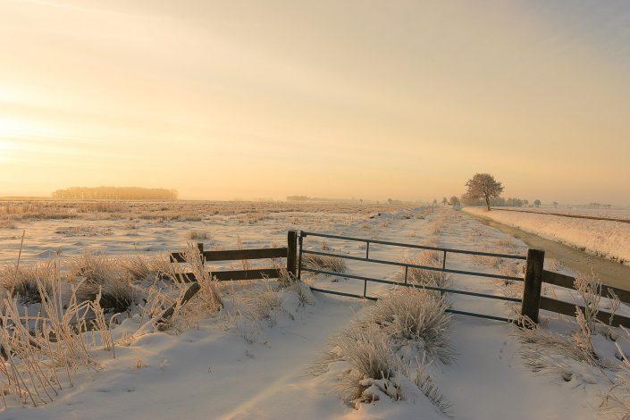 Een sneeuwlandschap boven de weilanden in Drenthe